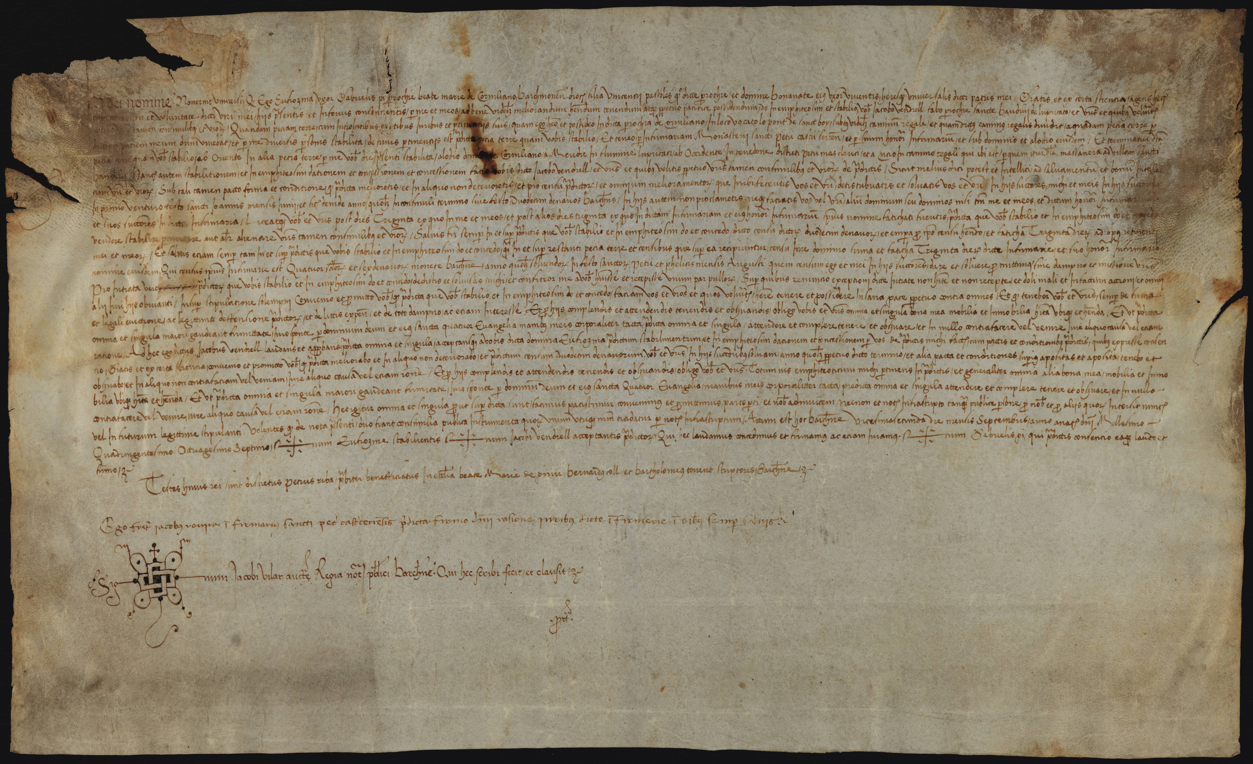 Recto 1487 Eufrasina