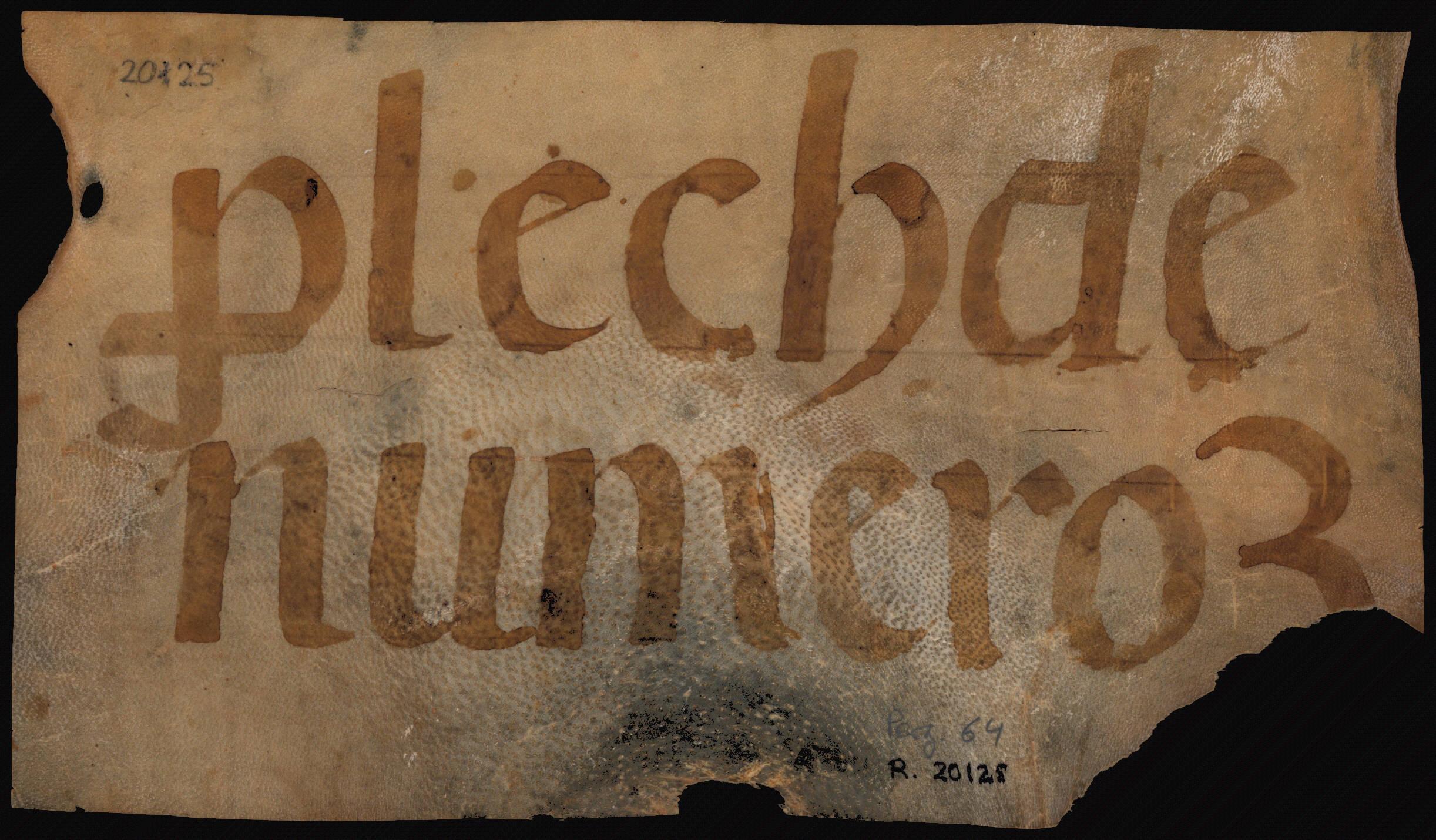 Verso 1450 Vicenç Peçoles