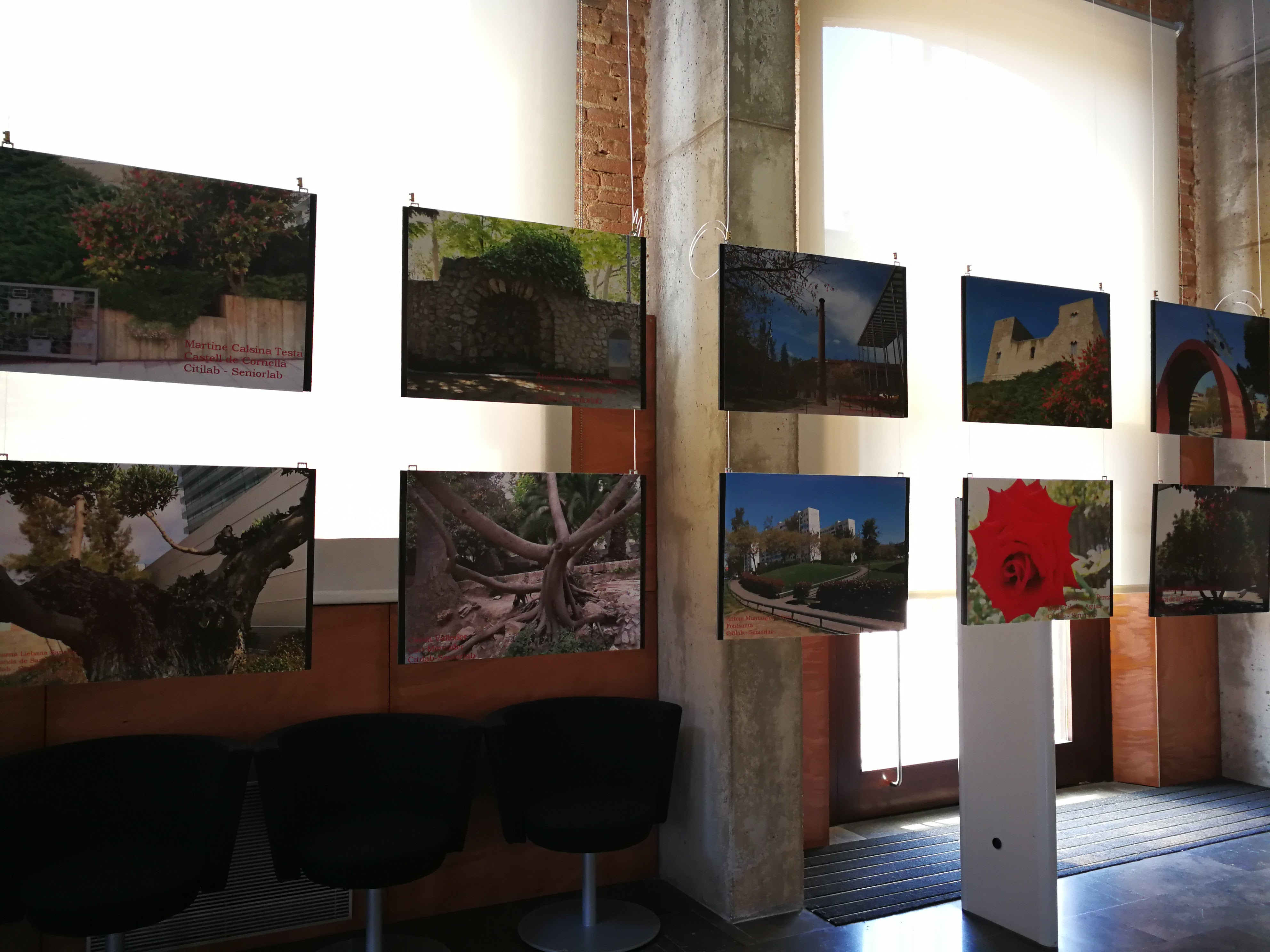 Exposició Camins i Fotografia